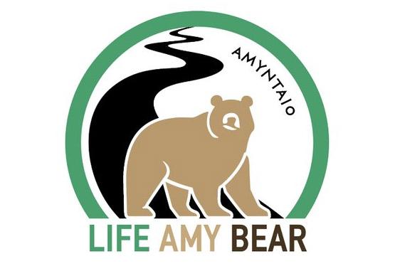 Έργο για την βελτίωση συνθηκών συνύπαρξης ανθρώπου - αρκούδας